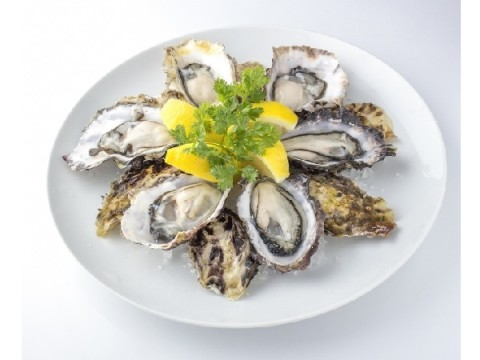 強い甘みの「あまころ牡蠣」が初登場♪  復興のシンボル&宮城県生産者の努力の結晶をおいしく食べて支援しよう!