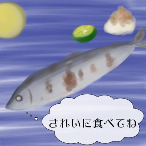 秋といえばサンマ!焼き魚をキレイに食べられる?