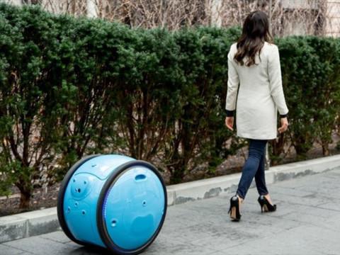ペット並みに愛おしい。トコトコとついてくる球体ロボット