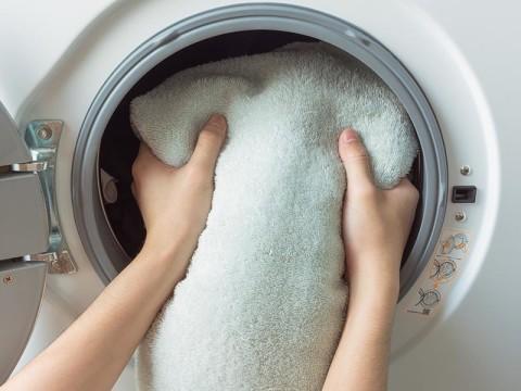一週間に何回洗濯してる?