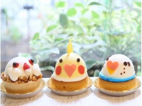 小鳥好き必見!「小鳥のアートフェスタ in 横浜」が今年も開催