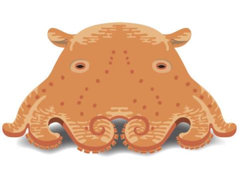 第1回「深海生物検定」申込受付中!深海標本展も開催
