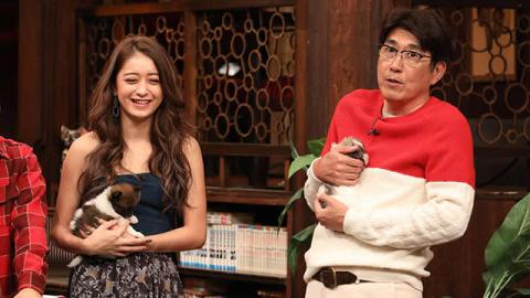 人気犬、レア犬大集合!世界最小の柴犬、その金額はなんと100万円!