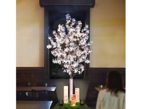 明治の雰囲気を感じる「Café 1894」でお花見&春メニューを!