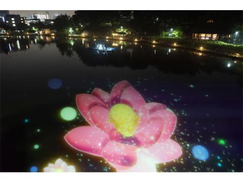 美しいハスが夜の池に咲き誇る!光×ライブのアートイベント