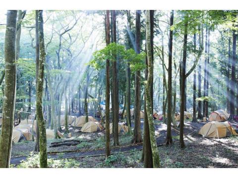 ポーラ美術館でキャンプ!1泊2日で自然&アートを満喫