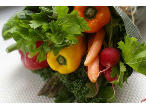 野菜の新たな魅力を学べる「831やさいフェスタ」開催!