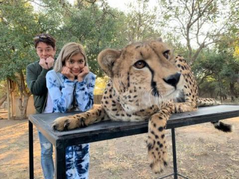 坂上忍&ローラ、南アフリカの密猟事情に迫る 巧妙なわなに言葉を失う
