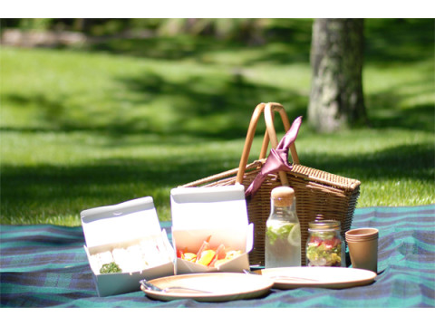 自然豊かなホテルの中庭で特別なピクニック体験をしよう!