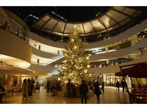 8mツリーが登場する横浜ベイクォーターのクリスマスイルミ!