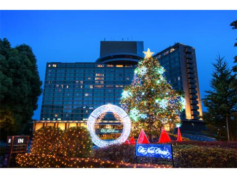 1日10室限定!夜景&ディナーを楽しむクリスマスの豪華ステイプラン