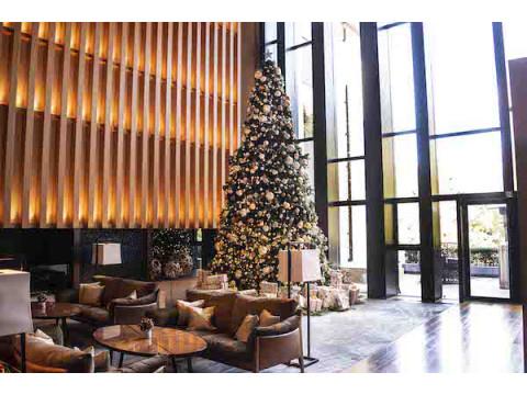 クリスマスはロマンチックな空間でプレミアムなコース料理を堪能しよう!