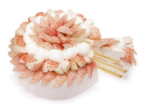 """22日は""""ショートケーキの日""""!カフェコムサに2種類の贅沢ショートが登場"""