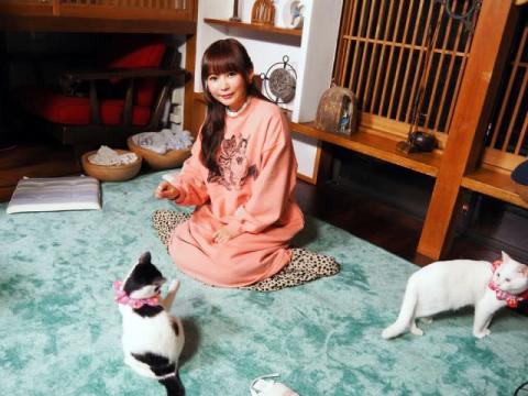中川翔子の愛猫ピンクちゃん、テレビ局の一日社長就任決定