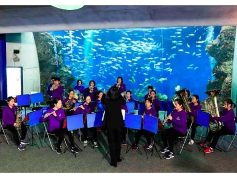 鴨川市民は入園無料!「鴨川シーワールド」で年に一度の特別イベントを開催