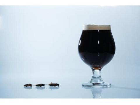 世界初!コオロギを原料に使用したクラフトビールが渋谷パルコで限定販売