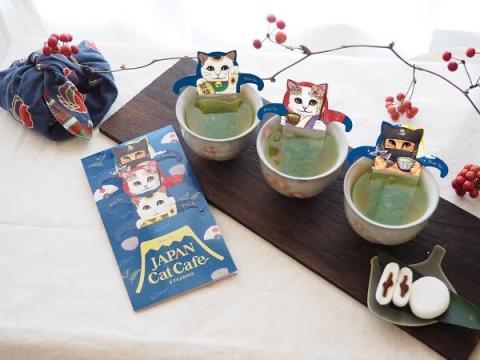 """""""和""""なネコ型ティーバッグ登場!ほっこり緑茶ティータイムを楽しもう"""