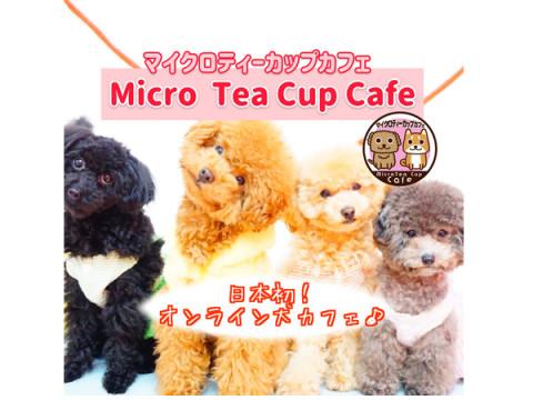 可愛い姿に癒される!日本初「オンライン犬カフェ」がスタート