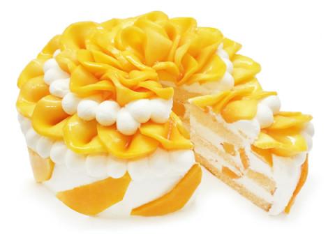 22日はショートケーキの日!「カフェコムサ」に完熟マンゴーのケーキが登場