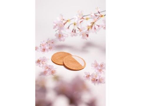 ホワイトデーや季節の贈り物に!「上野風月堂」から春限定の8商品が登場