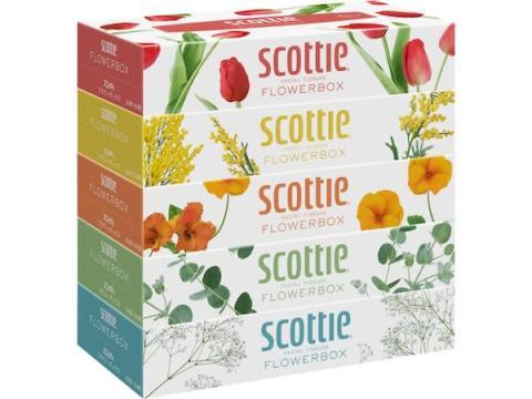 5種の花を採用!「スコッティティシュー フラワーボックス」が新デザインに