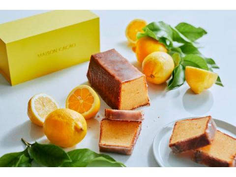 初夏にぴったり!カカオのフルーツビネガーを使用した「レモンケーキ」登場