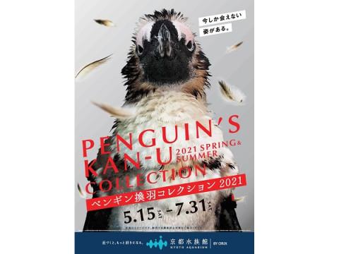 京都水族館で「ペンギン換羽(かんう)コレクション2021」開催