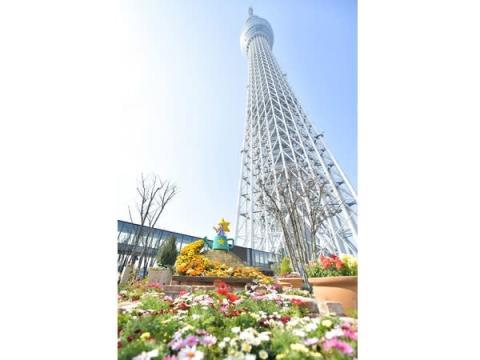 東京スカイツリーとその周辺のエリアで一日中楽しめる!お得なセットプランが発売