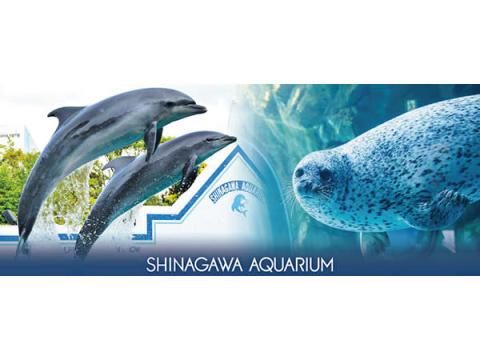 しながわ水族館×アトレ大森!海の生きものを親子で楽しめる企画が盛りだくさん