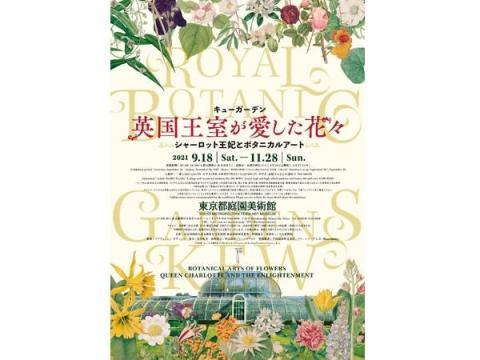 「キューガーデン 英国王室が愛した花々 シャーロット王妃とボタニカルアート」展開催