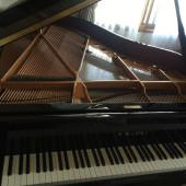 ピアノ弾ける人