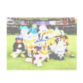 九州住みの野球ファン話しましょう