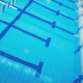 水泳やっててスタイル1がFrの人集まれ!