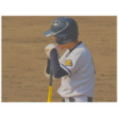高校野球好きな人!甲子園好きな人!(中学3年生限定)