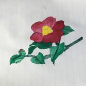 風景画もしくは宇宙イメージの絵や花のリクエスト募集中!!!!