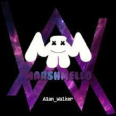 Marshmello,Alan Walker,EDM,NCS好き集まれ〜!