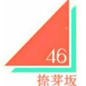 捺芽坂46 1期生 追加オーディション