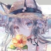 プリ小説家紫桜里の雑談