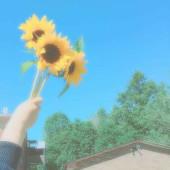 夏恋、、。