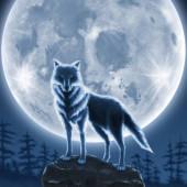 《〆切》 人狼ぐる🐺✨