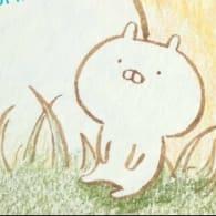 Aoi@すとぷりすなー🍓👑