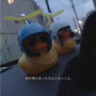 雪マロ(*´꒳`*)