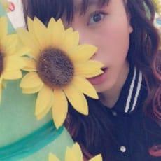 向日葵のアイコン画像