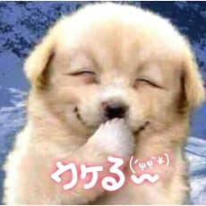 大石雅弥のアイコン画像