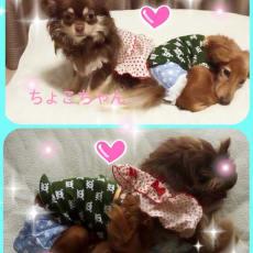 aiko☆Aのアイコン画像