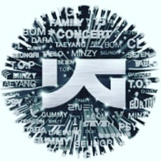 BIGBANG2NE1のアイコン画像