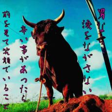 🐂🌸平瀬★龍神🐂🌸のアイコン画像