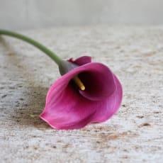 KAT-TUN&NEWSLOVEのアイコン画像