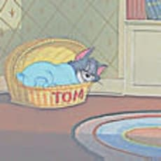 ゆーちゃのアイコン画像