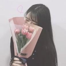 🥀 楓 綺 ¨のアイコン画像